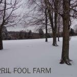 Kentucky snow 2013